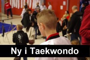 Web_Ny_i_Taekwondo_small